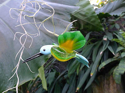 Photograph - Glass Bird Iv by Richard Reeve