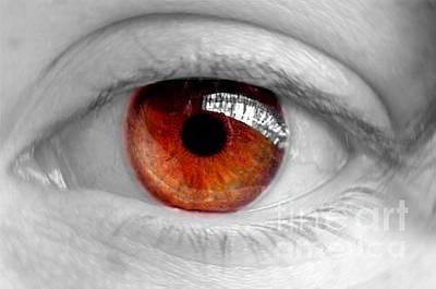 Photograph - Glass Eye by Vix Edwards
