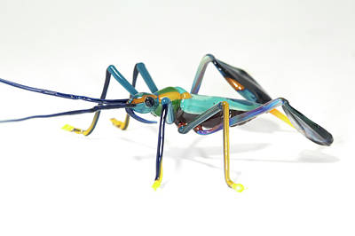 Handcrafted Photograph - Glass Insect by Tomasz Litwin