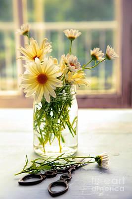 Photograph - Glass Jar With Daisies Near Window by Sandra Cunningham