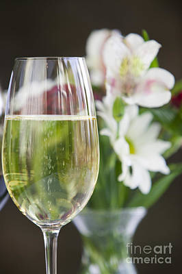 Design Turnpike Books Royalty Free Images - Glass of white wine with flowers. Royalty-Free Image by Don Landwehrle