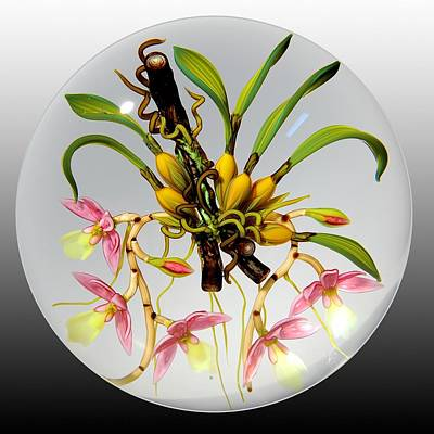 Flameworking Glass Art - Glass Orchids Bulbs And Branches by Chris Buzzini