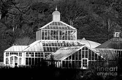 Photograph - Glasshouse At Dunedin Botanical Gardens by Nareeta Martin