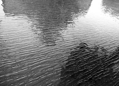 Photograph - Glassy B by Laurie Tsemak