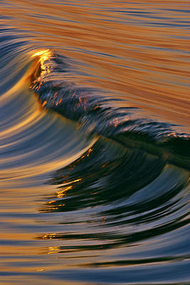 Photograph - Glassy Wave C6j7895 by David Orias