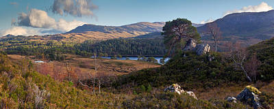 Glen Affric Photograph - Glen Affric Panorama II by Gary Eason