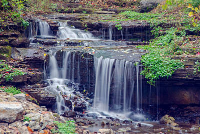 Photograph - Glen Falls Park by Guy Whiteley
