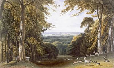 Glen Painting - Glen In Windsor Park Near Bishops Gate by William Daniell