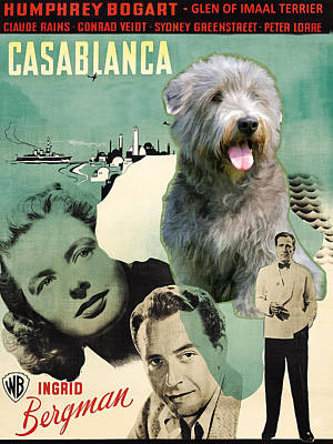 Painting - Glen Of Imaal Terrier Art Canvas Print - Casablanca Movie Poster by Sandra Sij