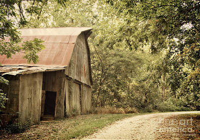 Indiana Dogwood Trees Photograph - Glendale Barn by Diane Enright