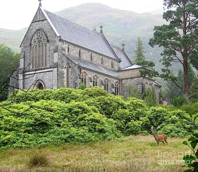 Photograph - Glenfinnan Stag by Denise Railey