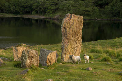 Neolithic Photograph - Glengarriff, Ireland, Uragh Stone Circle by Tom Norring