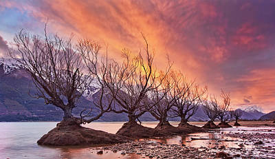 Mountain Sunset Photograph - Glenorchy On Fire by Yan Zhang