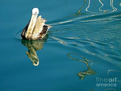 Art Print featuring the photograph Gliding by Clare Bevan