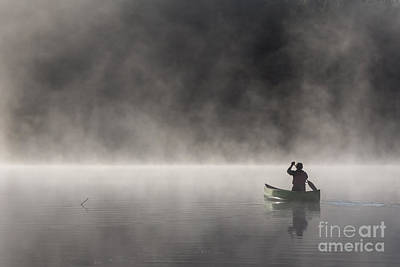 Photograph - Gliding Through The Mist by Barbara McMahon