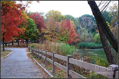 Glimpses Of Autumn Original