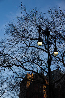 Photograph - Glimpses Of New York City - Skyscrapers Through The Tree Branches by Georgia Mizuleva