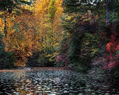 Photograph - Glittering Pond by Steven Richardson