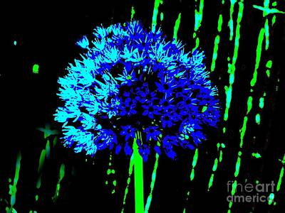 Art Print featuring the photograph Globe Allium  by Sally Simon