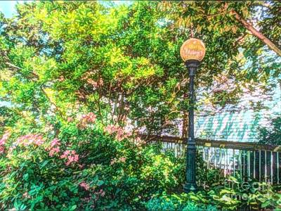 Photograph - Globe Lamp Post by Becky Lupe