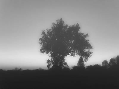 Photograph - Gloomy Day by Kristie  Bonnewell
