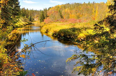 Woodlands Photograph - Glorious Autumn by Jim Sauchyn