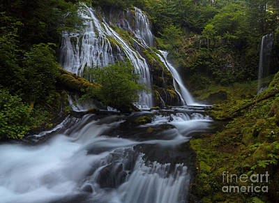Eden Photograph - Glorious Cascading by Mike Reid