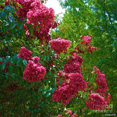 Digital Art - Glorious Crepe Myrtle by Luther Fine Art
