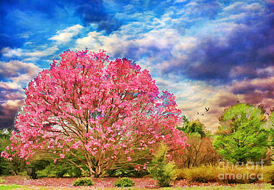 Glorious Spring Art Print by Darren Fisher