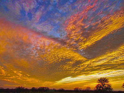 Wall Art - Photograph - Glorious Sunrise by Shannon Story