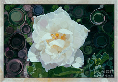 Painting - Glorious White Rose Abstract Flower Painting by Omaste Witkowski