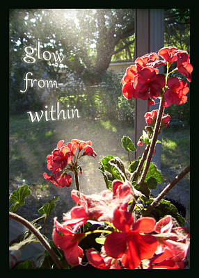 Photograph - Glow Within by Ginny Schmidt