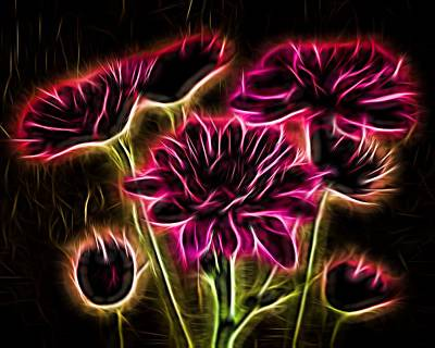 Photograph - Glowing Bouquet by Judy Vincent