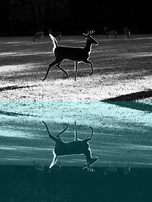 Glowing Buck Reflection Art Print
