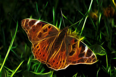 Dark Photograph - Glowing Butterfly by Shane Bechler