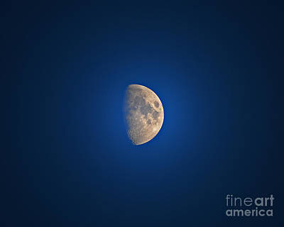 Glowing Gibbous Print by Al Powell Photography USA