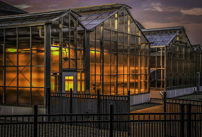 Photograph - Glowing Greenhouse by Phil Cardamone