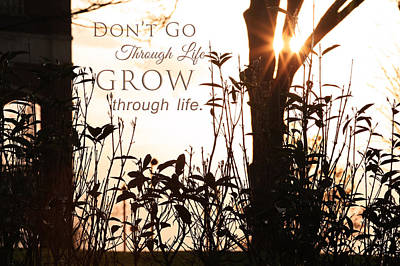 Photograph - Glowing Landscape With Message by Mary Buck