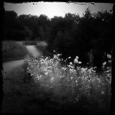 Pathway Photograph - Glowing Path Before Me by Stefanie Roberts