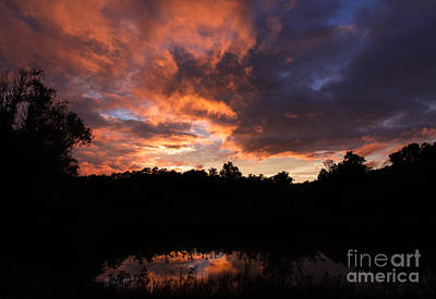 Photograph - Glowing Peace by Haren Images- Kriss Haren