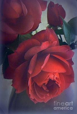 Photograph - Glowing Rose by Diana Besser