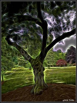 Painting - Glowing Tree by Jon Volden