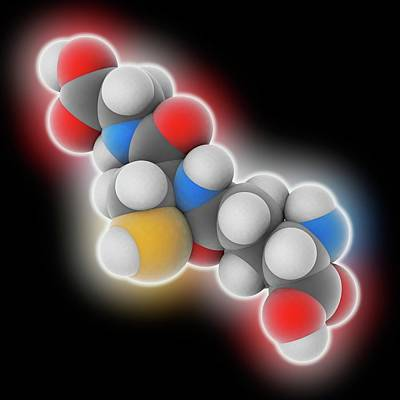 Glutathione Molecule Art Print by Laguna Design