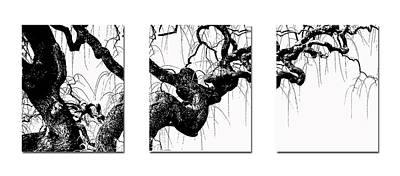 Photograph - Gnarly Tree Triptych by TK Goforth