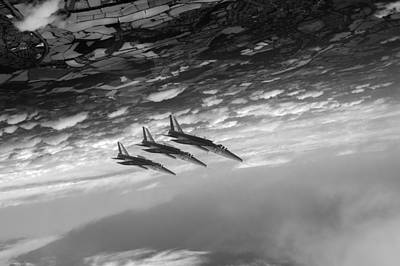 Digital Art - Gnats Inverted Black And White Version by Gary Eason