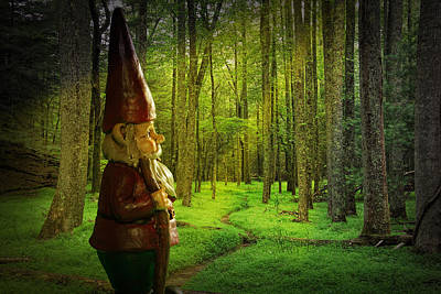 Photograph - Gnome Traveler On A Forest Path Bathed In Sunlight by Randall Nyhof