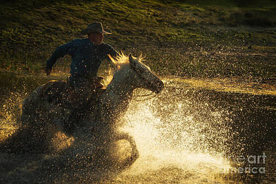 Photograph - Go Cowboy by Ana V Ramirez