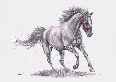 Forelock Drawing - Go For A Run by Robyn Green