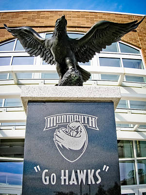 Photograph - Go Hawks by Colleen Kammerer