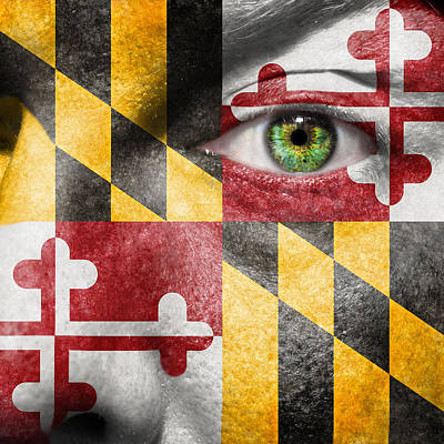 Photograph - Go Maryland by Semmick Photo
